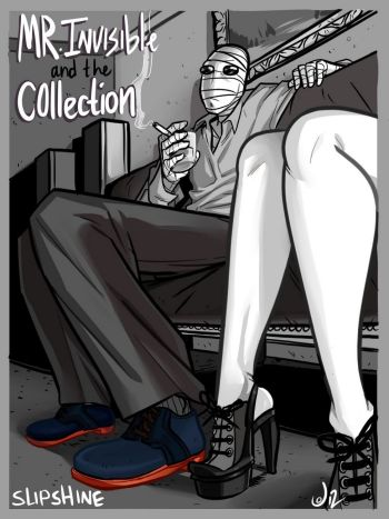 Mr Invisible And The Collection cover